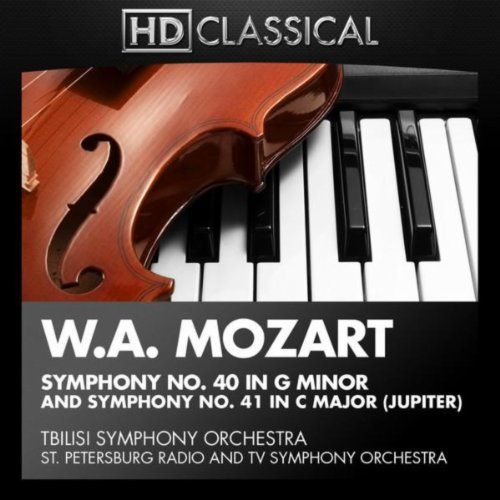 Symphony No. 40 in G Minor, K. 550: II. Andante