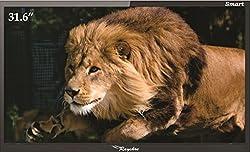 RAYSHRE REPL32LEDFHDSM4 32 Inches Full HD LED TV