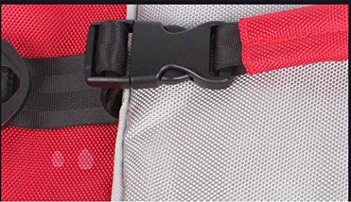 Outdoor Pacchetto Di Isolamento Sacchetto Più Freddo Portatile Sacchetto Del Pranzo Refrigerato,Black Black
