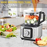 Inalsa INOX 1000-Watt Food Processor (Black/Silver)