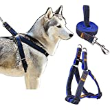 Triumilynn Dog Leash Harness Set, Heavy Duty Dog Cat Harness Leash For Small Medium Large Breed, No Choke And Comfort, Denim Adjustable Cat Leash Harness For Walking Training(2. 5Cm Blue)