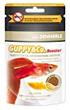 Dennerle Guppy 100 ml, 1er Pack (1 x 100 ml)
