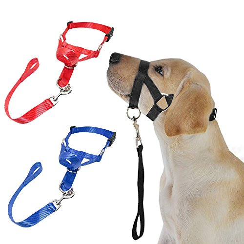 LA VIE Bozal de Entrenamiento Ajustable para Mascota Perro Bozal de Nylon Seguridad Cómodo Dog Muzzel Multi-tamaño Ofrece un Placa de Identificación para Mascotas Bozal L Negro