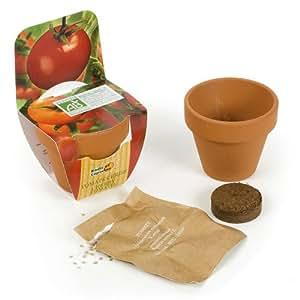 Radis et Capucine Mini kit de plantation tomate cerise bio