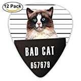 Bad Gang Cat In Jail Kitty Under Arrest Criminal Prisoner Guitar Picks 12 / Pack