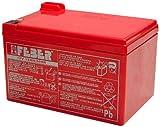 Famosa 800003106 - Batteria 12V 12 Ah