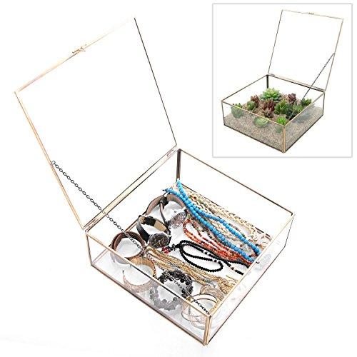 Vintage latón y cristal transparente–Terrario caja/plantas pant
