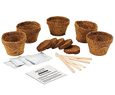 Gift Republic Grow It Geschenkset Bonsai-Pflanzset von Gift Republic - Du und dein Garten