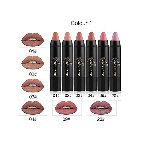 6 couleurs rouge à lèvres, NICEFACE matte longue durée hydratant lipgloss crayon lèvres bâton stylo à lèvres gloss set professionnel maquillage outil hydratant kit nutritif(#1)