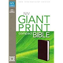 Holy Bible: New International Version, Burgundy, Leather-Look, Giant Print