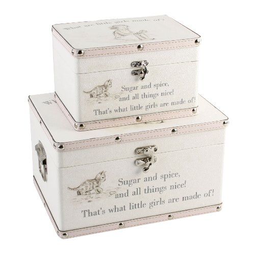 Luggage series - Set of 2 Baby Storage Boxes -