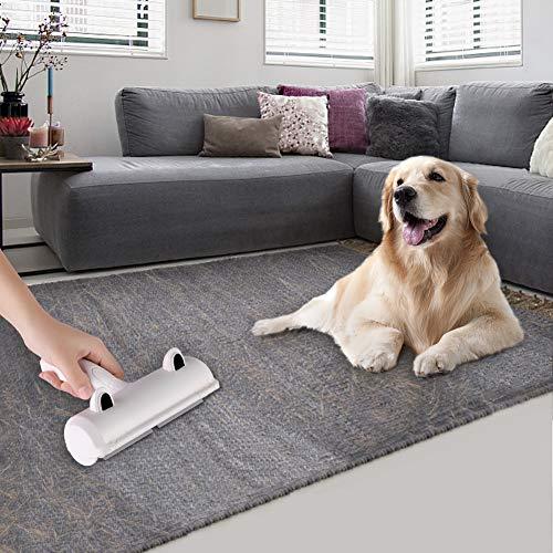 Zoom IMG-3 togli peli animali spazzola per