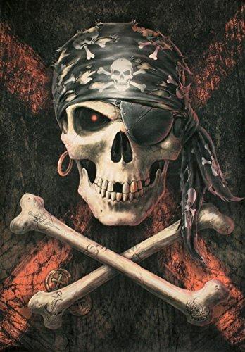 LPG International Anne Stokes Piraten Totenkopf Stoff Poster Print, 30von 101,6cm (Piraten-totenkopf-dekor)