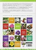 Image de Il libro completo dei fiori