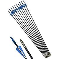 """ZSHJG Tiro al Arco Flechas de Fibra de Vidrio 31"""" Flechas de Práctica de Tiro para Compuesto Recorvar Arco 12 Piezas (Azul)"""
