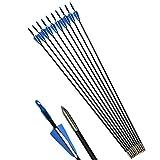 ZSHJG 12Pcs Tiro con l'arco per Bersagli Frecce in Fibra di Vetro Frecce Pratica Frecce per Composto Arco Ricurvo (blu)