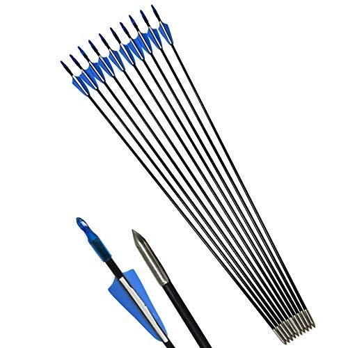 """ZSHJG Tiro al Arco Flechas de Fibra de Vidrio 31""""Flechas de Práctica de Tiro para Compuesto Recorvar Arco 12 Piezas (Azul)"""