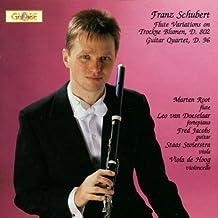 Flötenvariationen / Gitarrenquartett
