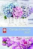Caritas-Kalender 2017: Das Caritas-Kalenderbuch 2017