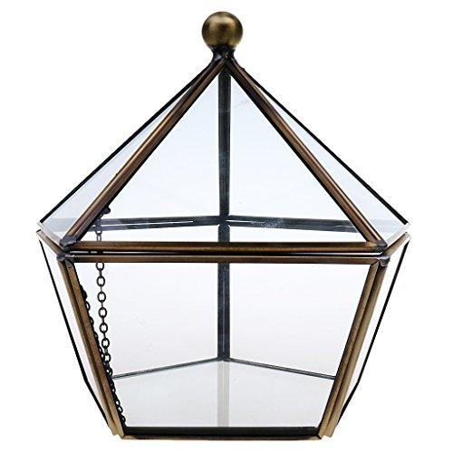 Sharplace Tabletop Glasterrarium Cube Fairy Gartenhaus Gewaechshaus Pflanze - color7, 170*160*160MM