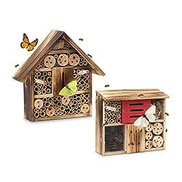 Relaxdays Casetta per insetti legno venato in 2 misure rifugio per coleotteri api hotel per api materiali naturali beige