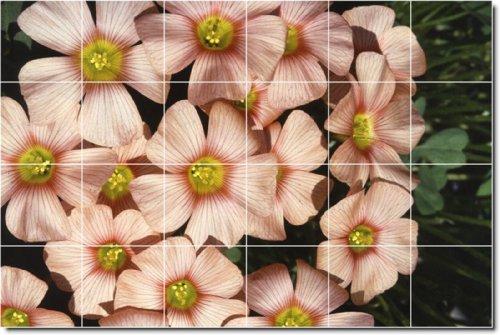 FLORES FOTO BACKSPLASH AZULEJO MURAL 1  48X 182 88CM CON (24) 12X 12AZULEJOS DE CERAMICA