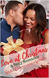 Love at Christmas: A Sexy Romance