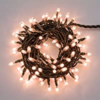 Catena 3,1 m, 100 minilampade chiare, controller giochi di luce, addobbo albero di natale, catena luminosa