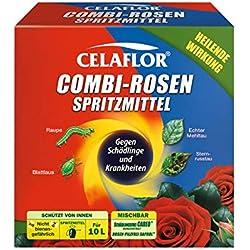 Celaflor Combi-Rosen Spritzmittel 2 x 100 ml Vollsystemische Wirkstoffe gegen Schädlinge sowie 3 Rosenkrankheiten