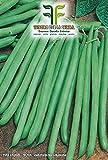 400 C.ca Semi Fagiolo Nano Verde Mangiatutto Bobis - Phaseolus Vulgaris In Confezione Originale Prodotto in Italia - Fagioli nani verdi