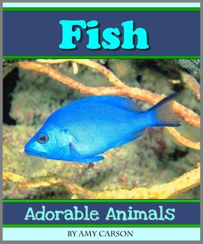 Fish: A Collection of Colorful Fish Photos! (Adorable Animals) (English Edition) (Adorable Tank)