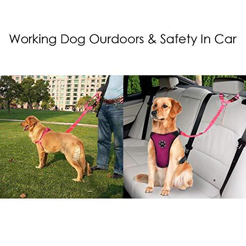 SlowTon Cintur/ón de Seguridad para Perros Paquete de 2 Cintur/ón de Seguridad para el Asiento del cajero con Banda el/ástica y Reflectante Se Conecta con el veh/ículo con Brazo Negro