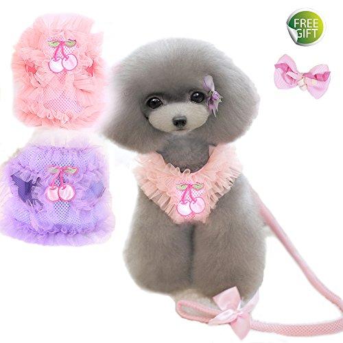 Newtensina Haustier Geschirre & Leinen Nette Spitze Breathable Hundegeschirr und Blei Set für Hund - Einschließen ein rosa Haar Klammern