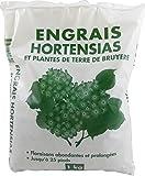 Best Les engrais - Florendi Jardin Engrais Hortensias - Blanc 13 x Review