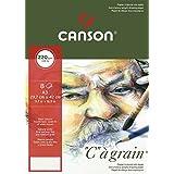 """CANSON Lot de 5 Pochettes 8 F Papier dessin """"C"""" à grain A3 220g Blanc Nature"""