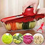HiSummit Vegetable Slicer,with 1 container, 6 blades and handpiece, Vegetable Cutter & Julienne