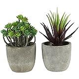 Vosarea 2PCS Decorative Artificial Bonsai Succulent Plant Retro Faux Plants with Pots