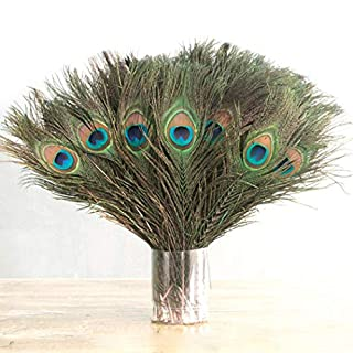 Meihet Beautiful Natural Peacock Tail Feathers-Natural Decoration for Arts and Crafts, Home Decoration, Costumes, and Wedding Centerpieces,10-12inch,10 Pcs