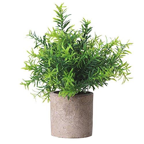 Catrne Künstliche Pflanzen Miniplastik dekorative Grünpflanzen mit grauen Töpfen für Ihr Büro und Ihrem Wohnbereich zur Zimmerdekoration (7)