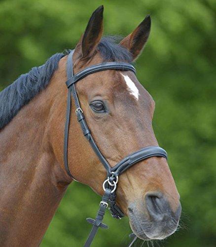 Waldhausen Star Zaum Gebisslos, schwarz, PON, schwarz, Pony