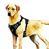 Hundehalt-reflektierende Stitching sorgt für die Sichtbarkeit der Nachtsichtbarkeit Keine Pull Dog Vest Harness für Mediun und Large Dog,XL