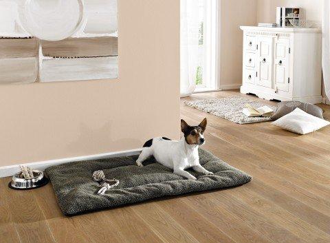 hundeinfo24.de Decke- rutschfeste warme Hundedecke – als Schlafdecke, Kuscheldecke – Kofferraumdecke – Länge 104 cm – grau