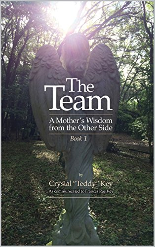 Used, The Team: A Mother's Wisdom from the Other Side, Book for sale  Delivered anywhere in UK