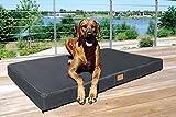 tierlando® Mobile Hundematratze HUGO BASIC   Gehobene Stabilität & Qualität!   Anti-Haar Polyester   XL 120 x 90 x 13 cm   Graphit Grau