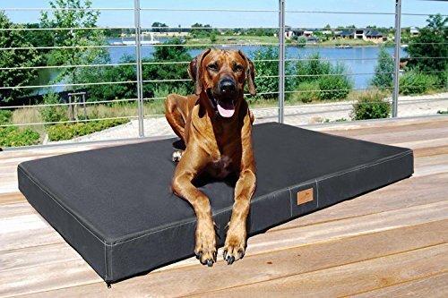 tierlando® Mobile Hundematratze HUGO BASIC | Gehobene Stabilität & Qualität! | Anti-Haar Polyester | XL 120 x 90 x 13 cm | Graphit Grau