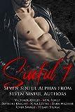 Sinful Seven Anthology (English Edition)