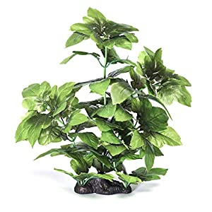 Pistachio Pet – Beautiful Aquarium Plant 16″/40cm With Base