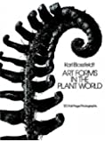 Art Forms in the Plant World (Dover Pictorial Archive)