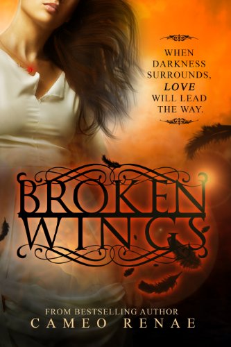 Broken Wings (Hidden Wings Series Book Two) (English Edition)