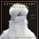 Image de Extraordinary Chickens 2014 Calendar